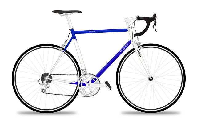 racing-bicycle-161449_640